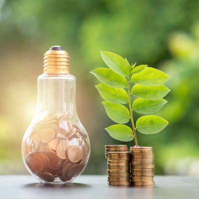 How to Manage a Greener Business